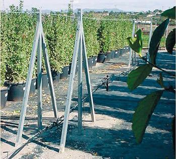 Postes y puntales galvanizados y manipulacion de plantas