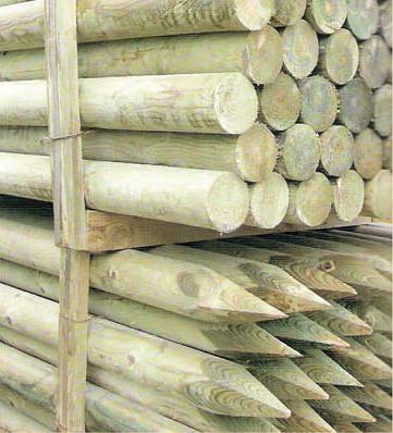 bambu5